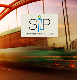 Structured Internship ProgrammE (SIP)